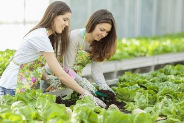 mladi-poljoprivrednici-700x467